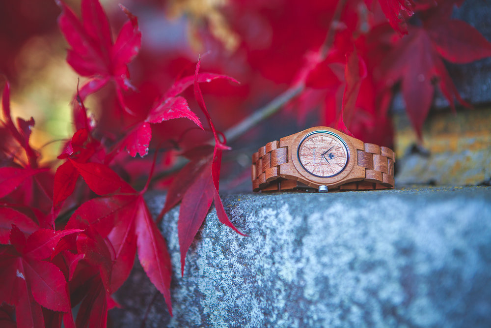 Client: Woodwatch