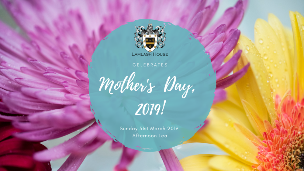 Copy of Copy of Mother's Day, 2019!.png