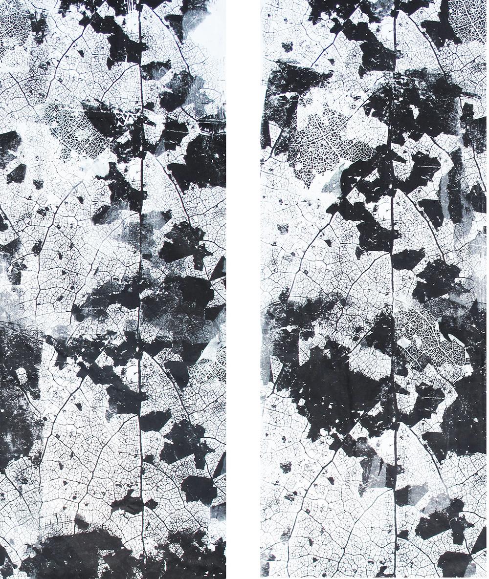 Motiv: Epidermis Fundort: an der Strasse, Blattskelett Material: Baumwolle Format: 1,50m x 2,50m