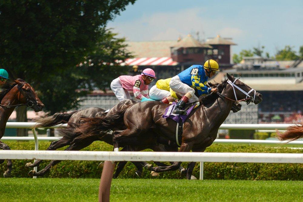 Saratoga Race Track - Race #5