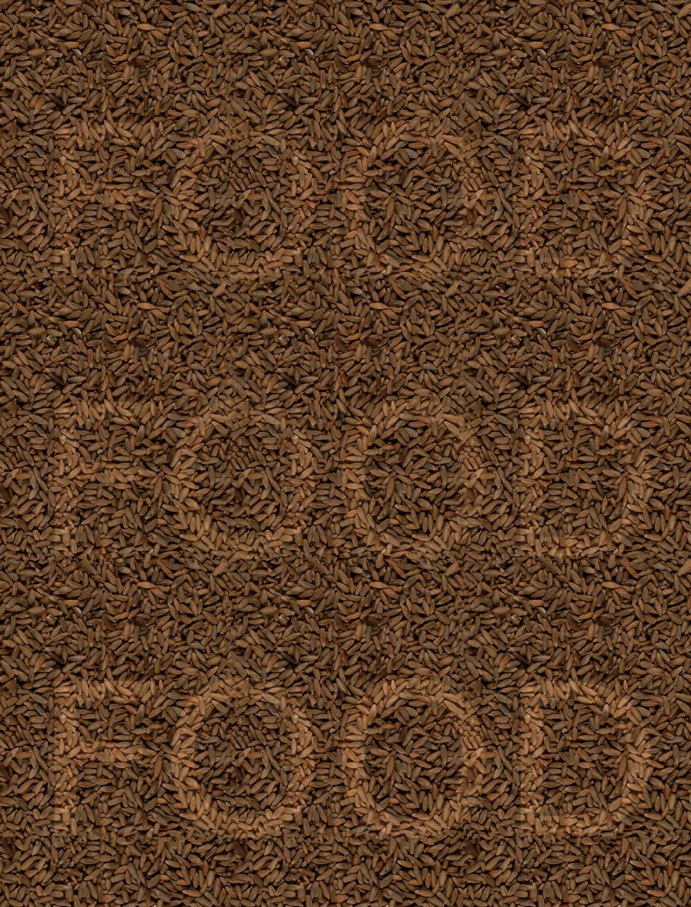 Rye-Food