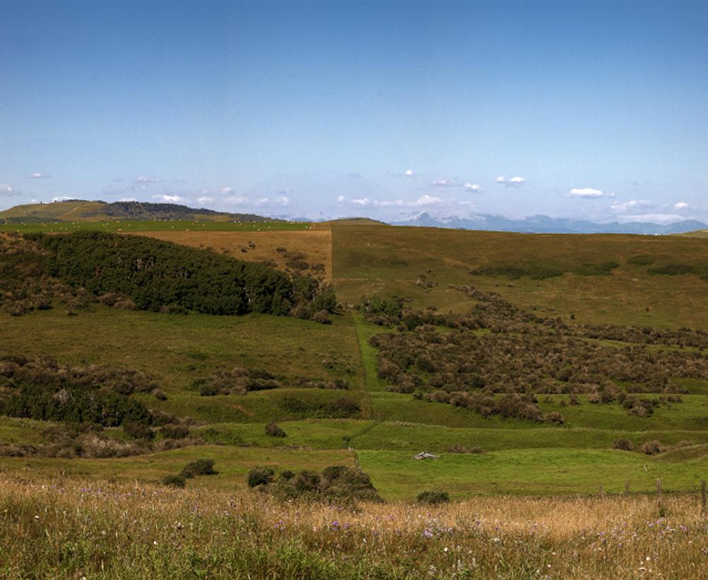 Split Hill