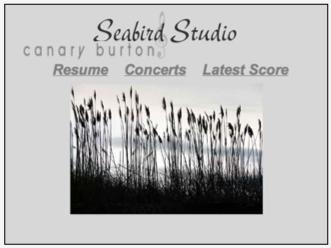 seabird-studio.jpg