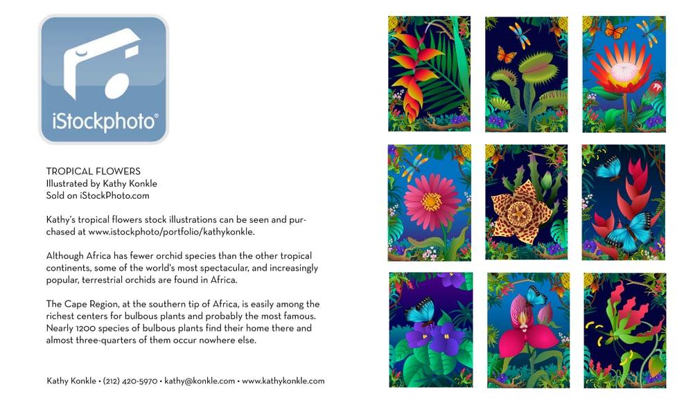Istock-Tropical-Flowers.jpg