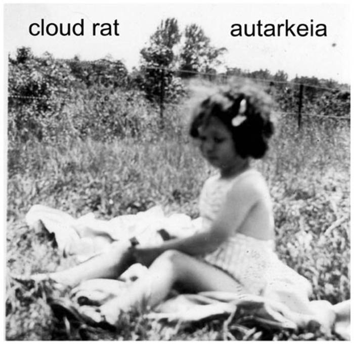"Cloud Rat/Autarkeia 7"" - SOLD OUT"