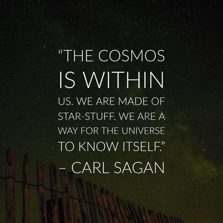 the cosmos.jpg