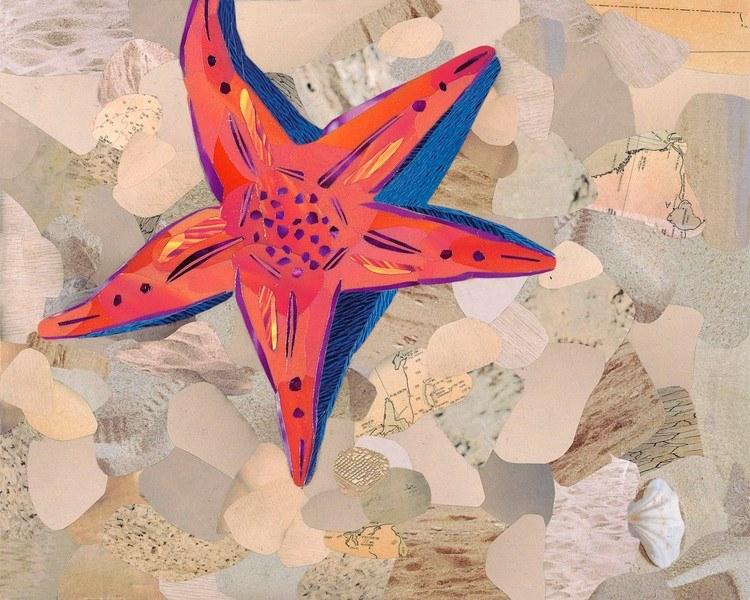 painted-starfish.jpg