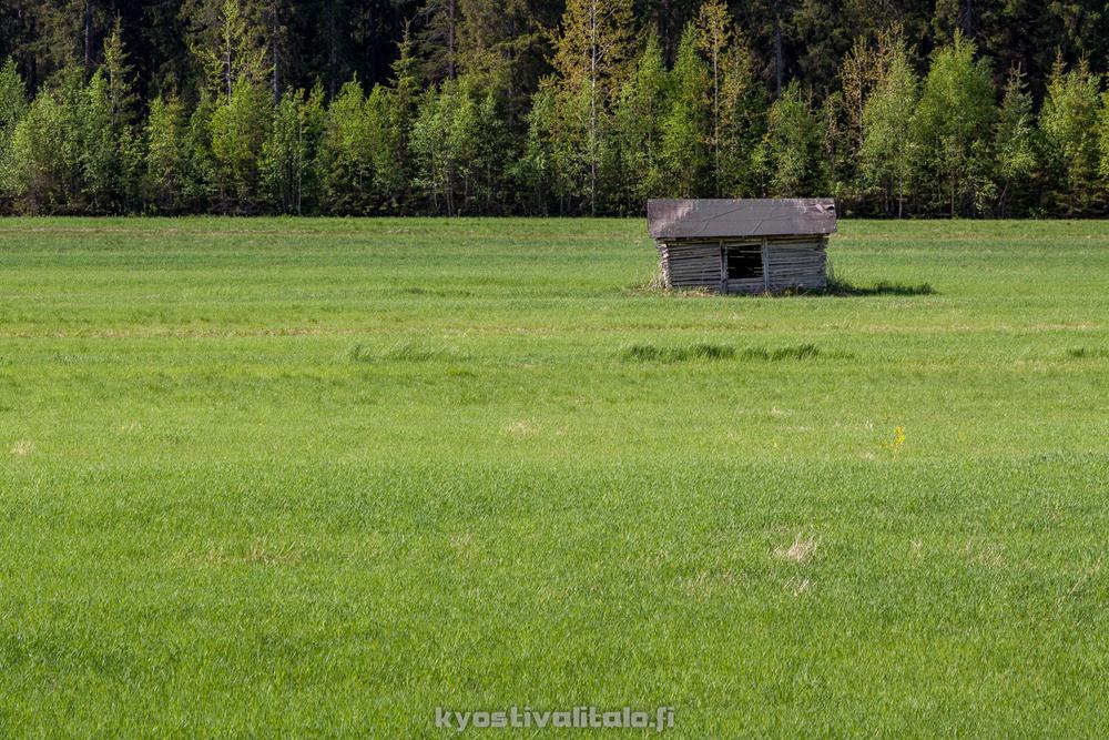 Lato on pääkohteena, mutta tyhjä peltoaukea aiheuttaa epätasapainoisen sommitelman
