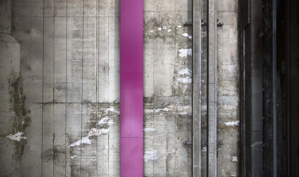 '牡丹色, Botan-iro'  (Peony), Photograph.