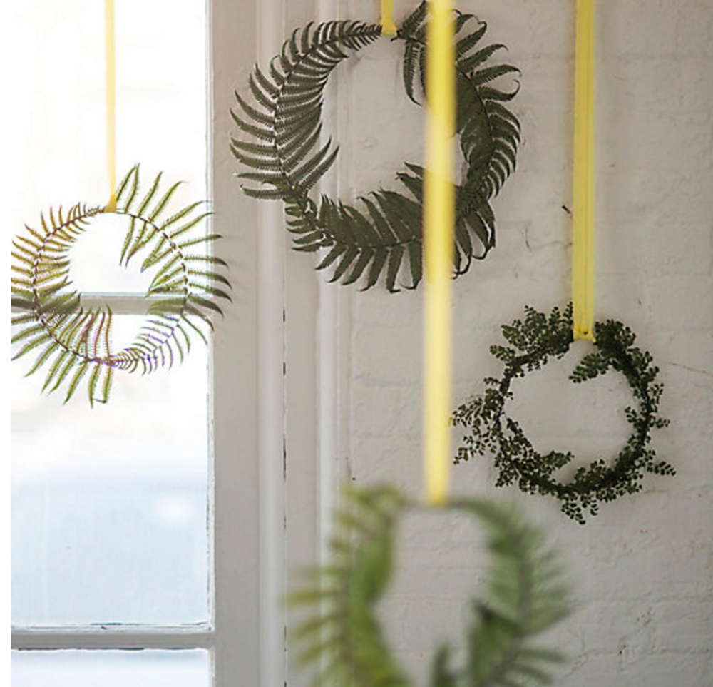 Preserved Fern Circlet Trio