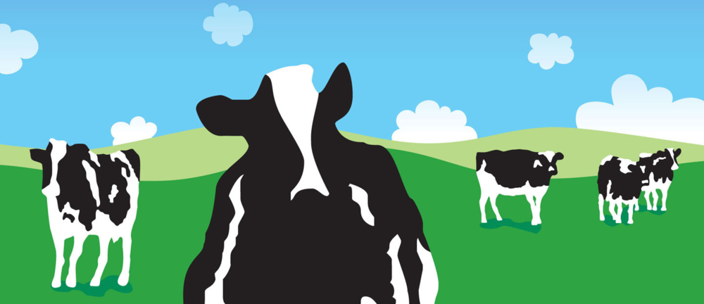 ben jerrys case study Team building was not the most effective way to launch an organizational development effort, in the case of ben and jerry's there are two critical issues that must be dealt with before any kind of team building should be attempted.
