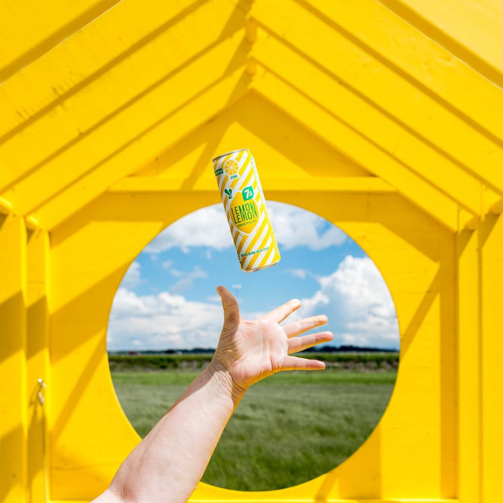 jeff-frenette-lemon-lemon-instagram-summer-2017-3.JPG