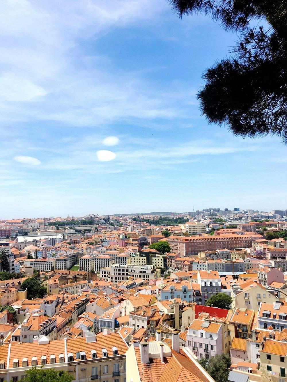 views from Sophia de Mello Beyner Viewpoint