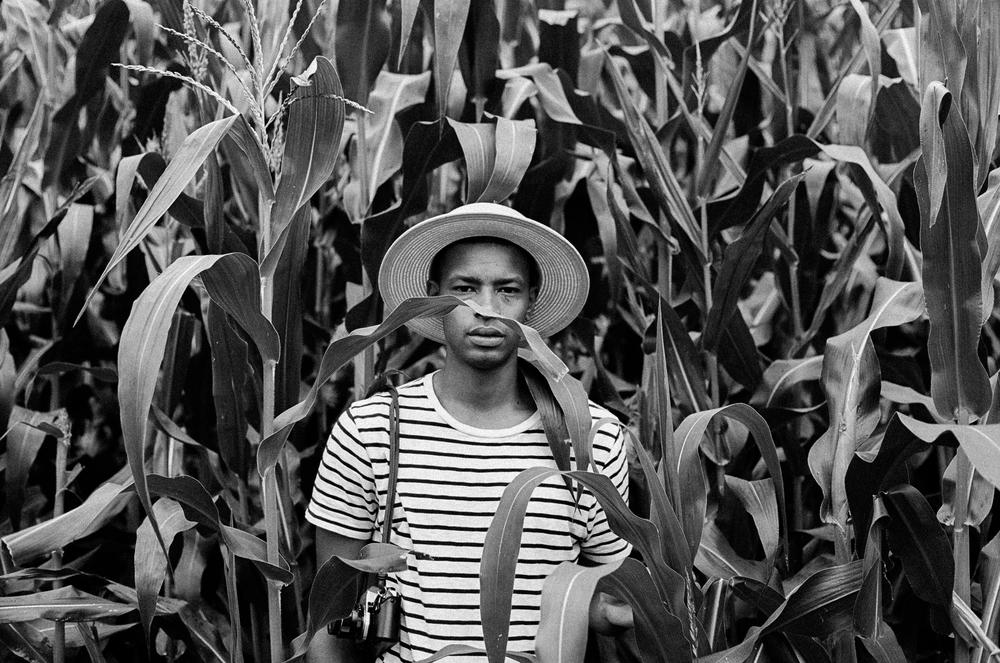 model_in_corn_fields_silentg