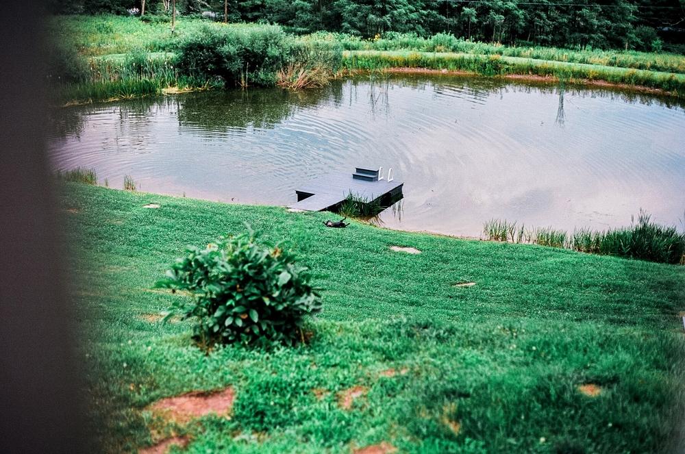silentg_ponds