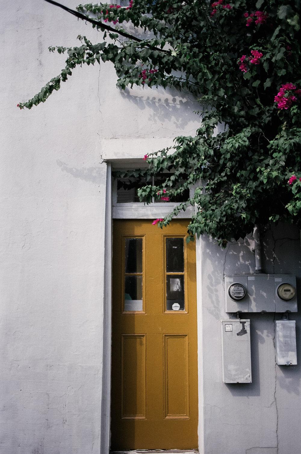 new orleans door fuji 400h
