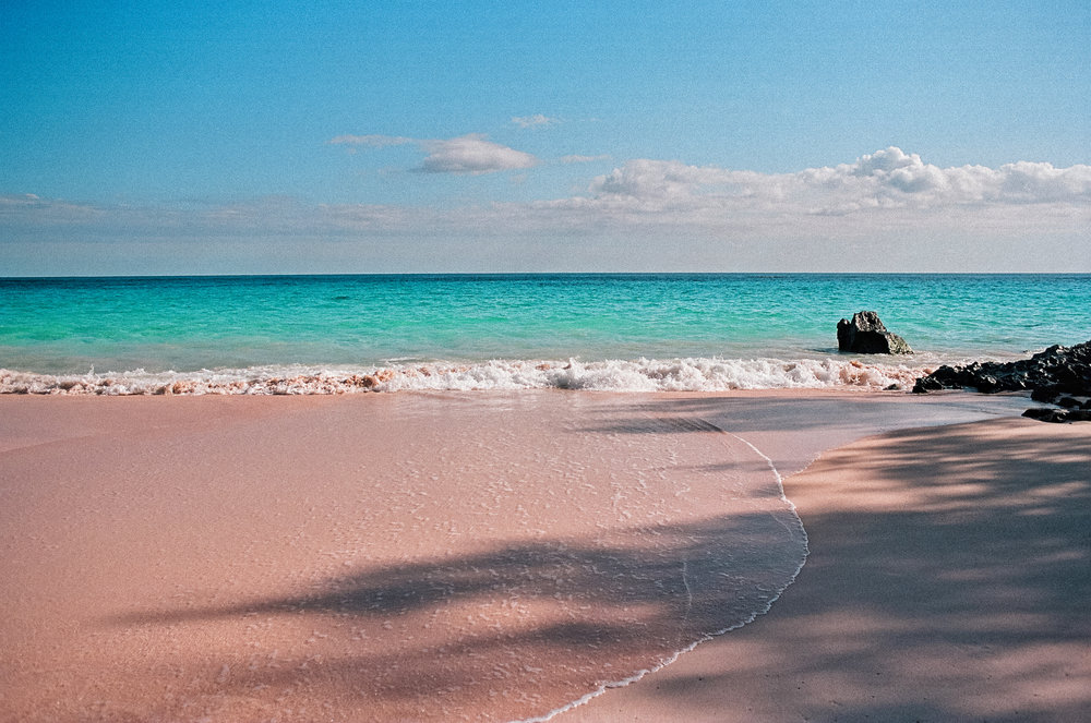bermuda tuckers point beach club portra 160