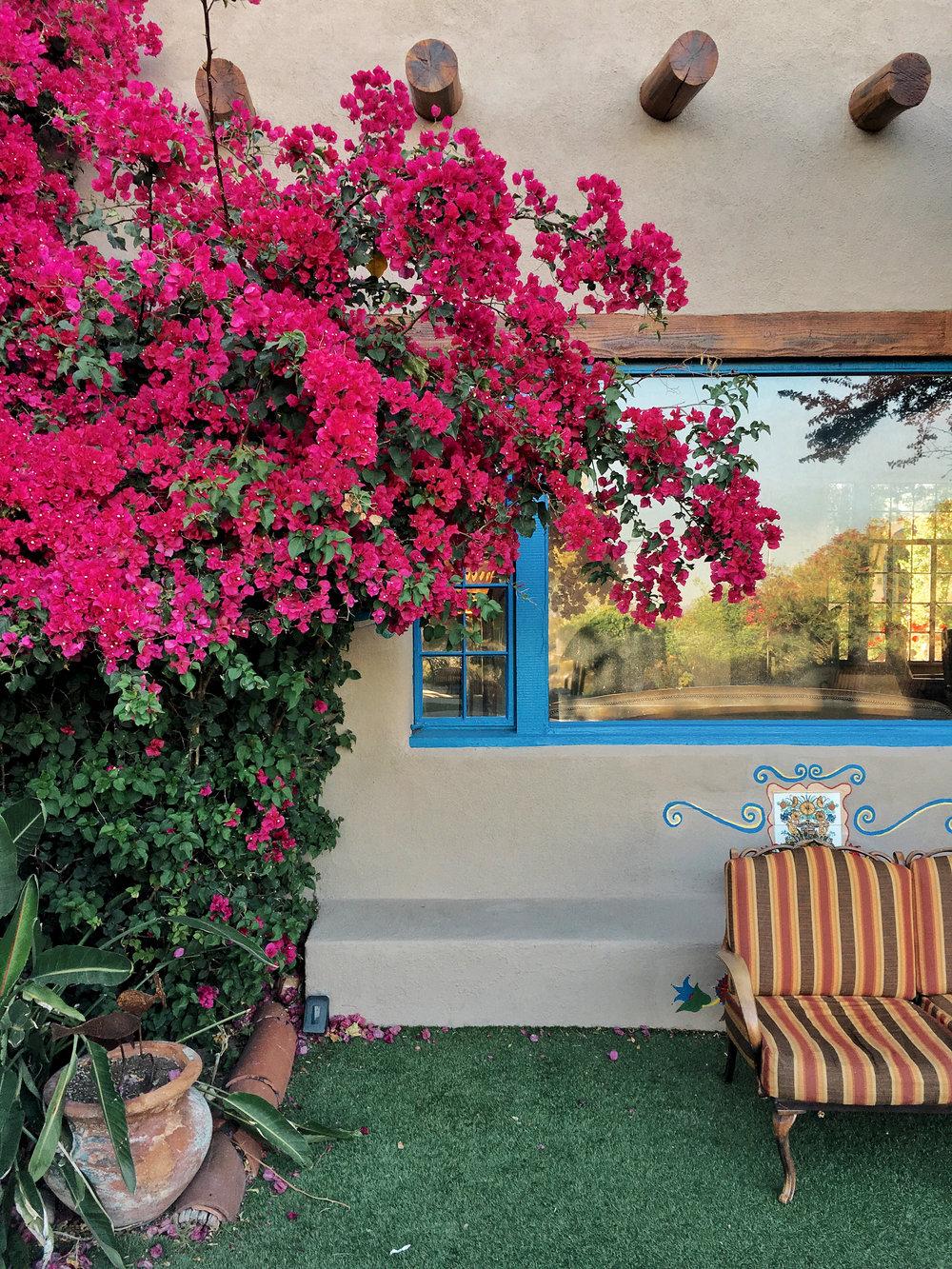 hacienda del sol garden