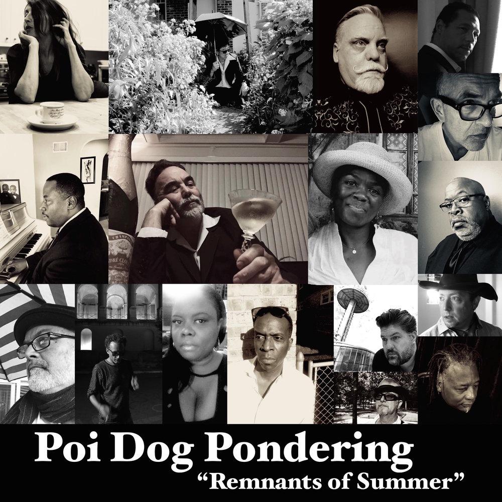 Poi Dog Pondering — Platetectonic Music