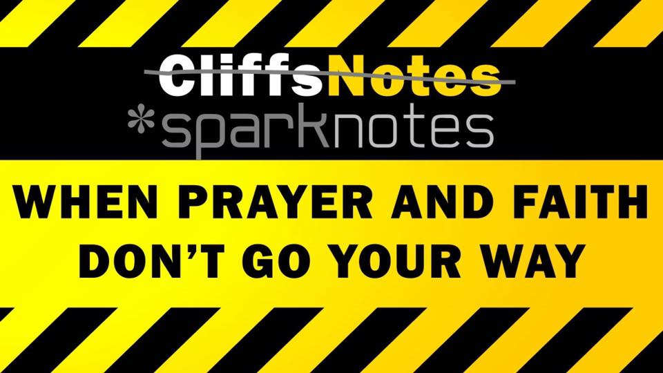 cliff notes or sparknotes