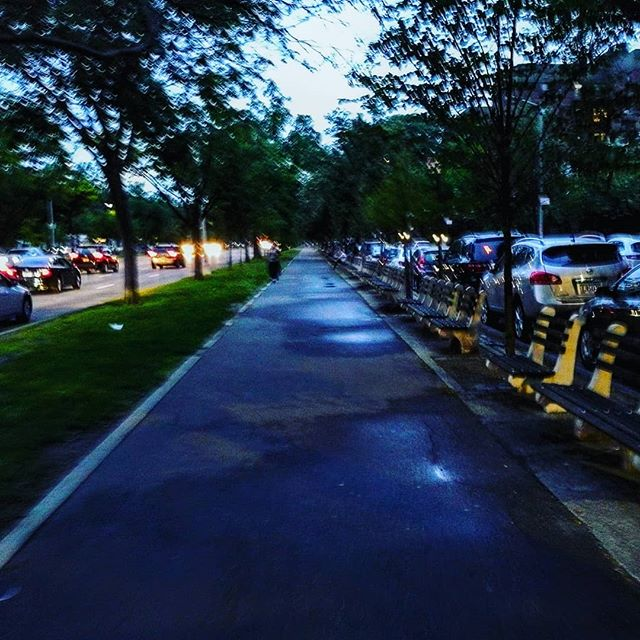 """Ocean Parkway Bike path last night. This is the oldest bike path in the US, designed by FL Olmstead and Calvert Vaux, paid for by public donations. It goes through Hasidic, Pakistani, and Russian neighborhoods from Prospect park to Coney Island. It was envisioned in 1867 but not completed til 1894. Olmstead and Vaux envisioned a vast complex of interconnected parks and tree-lined Boulevards extending like spokes from  Prospect Park. Sadly only this spoke came to fruition. The NY times called it """"elegant and sketchy."""" #brooklyn  #bicycle #fredericklawolmsted"""