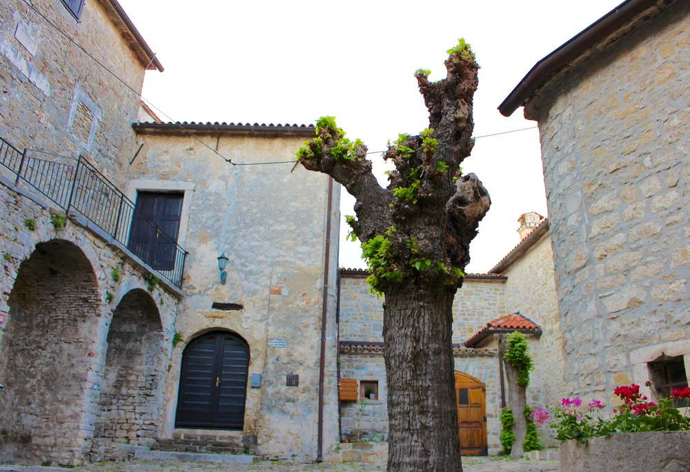 10 REASONS TO VISIT ISTRIA