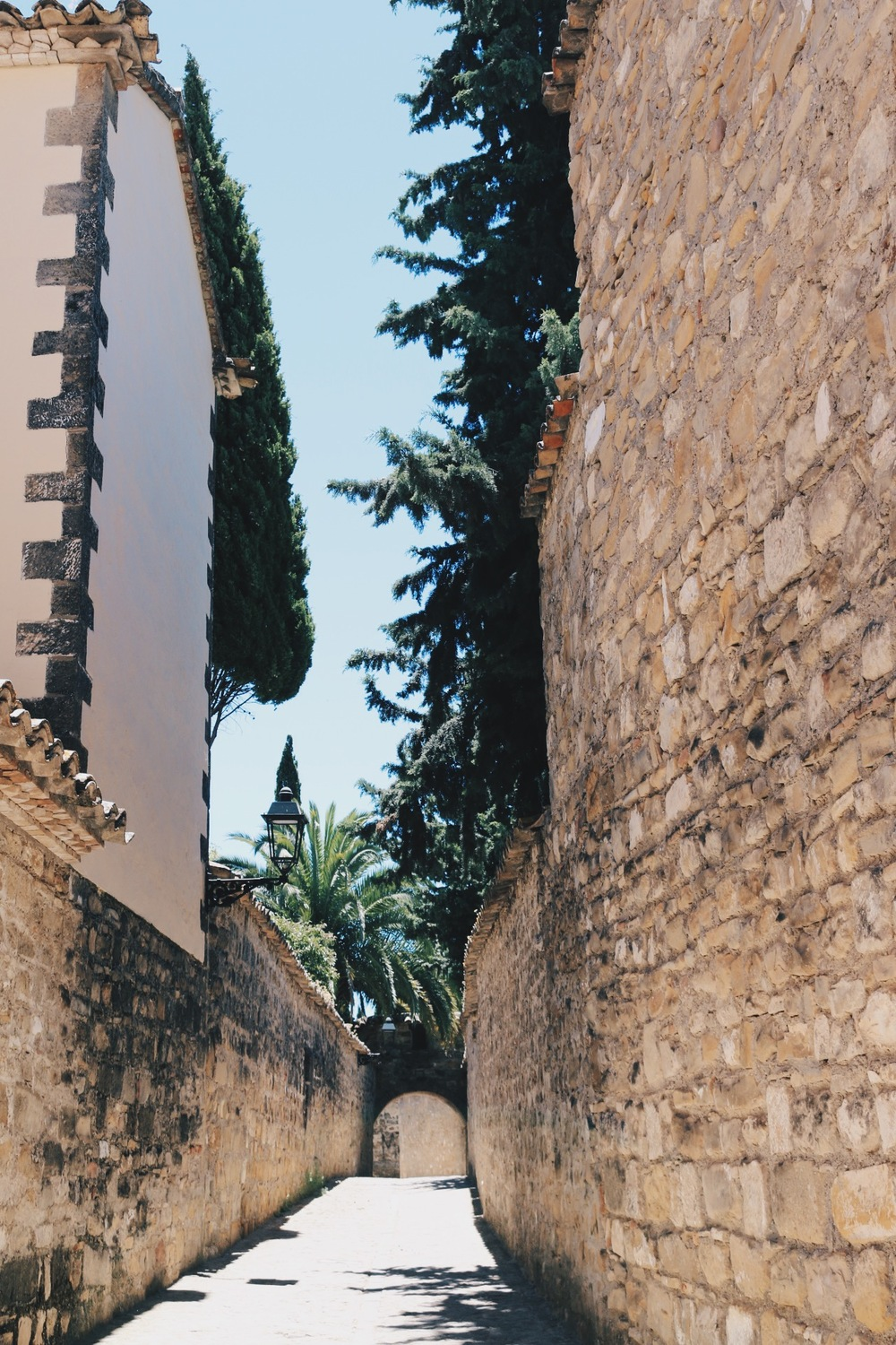 TIME MACHINE: THE NARROW PATHS BY THE CATHEDRAL