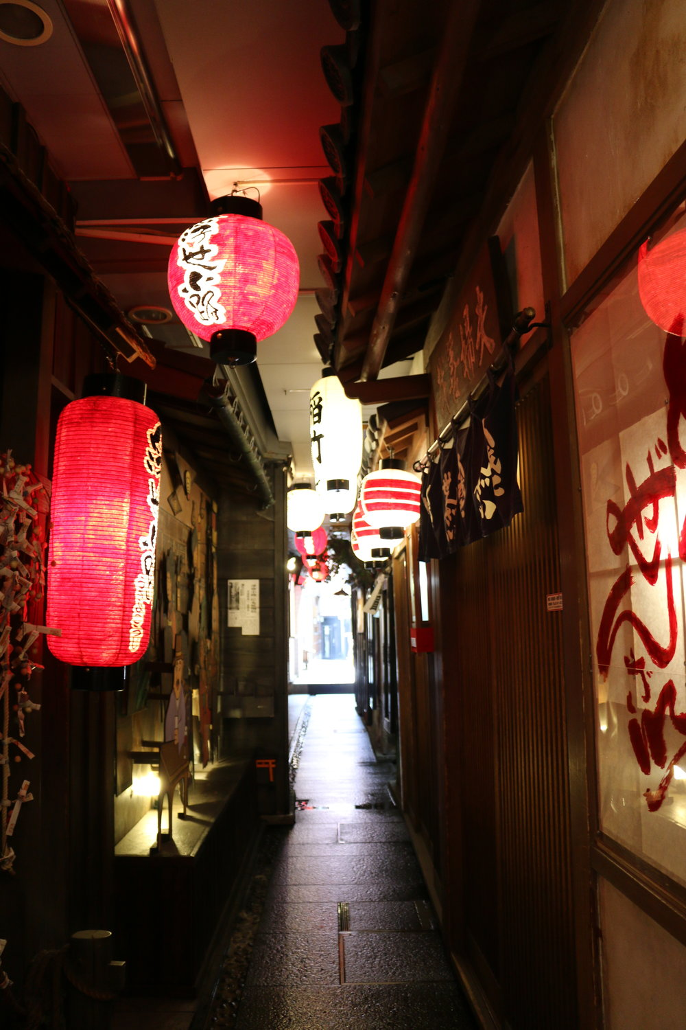 Passing through to get to Hozenji Yokocho