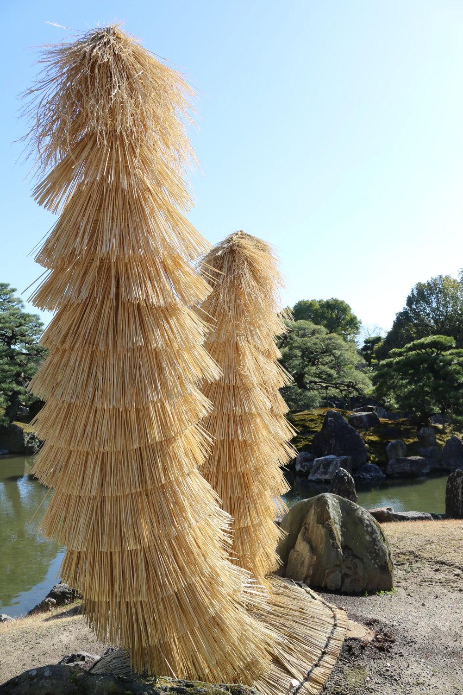 Kinkaku-ji garden