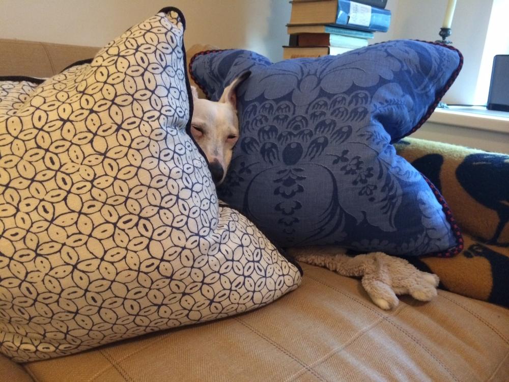 Pillow Fabric - China Seas, Trim - Samuel and Sons
