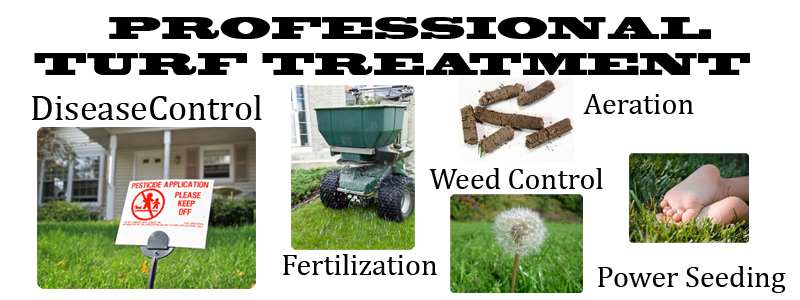 GreenAcresVA-ProfessionalTurfTreatment.jpg