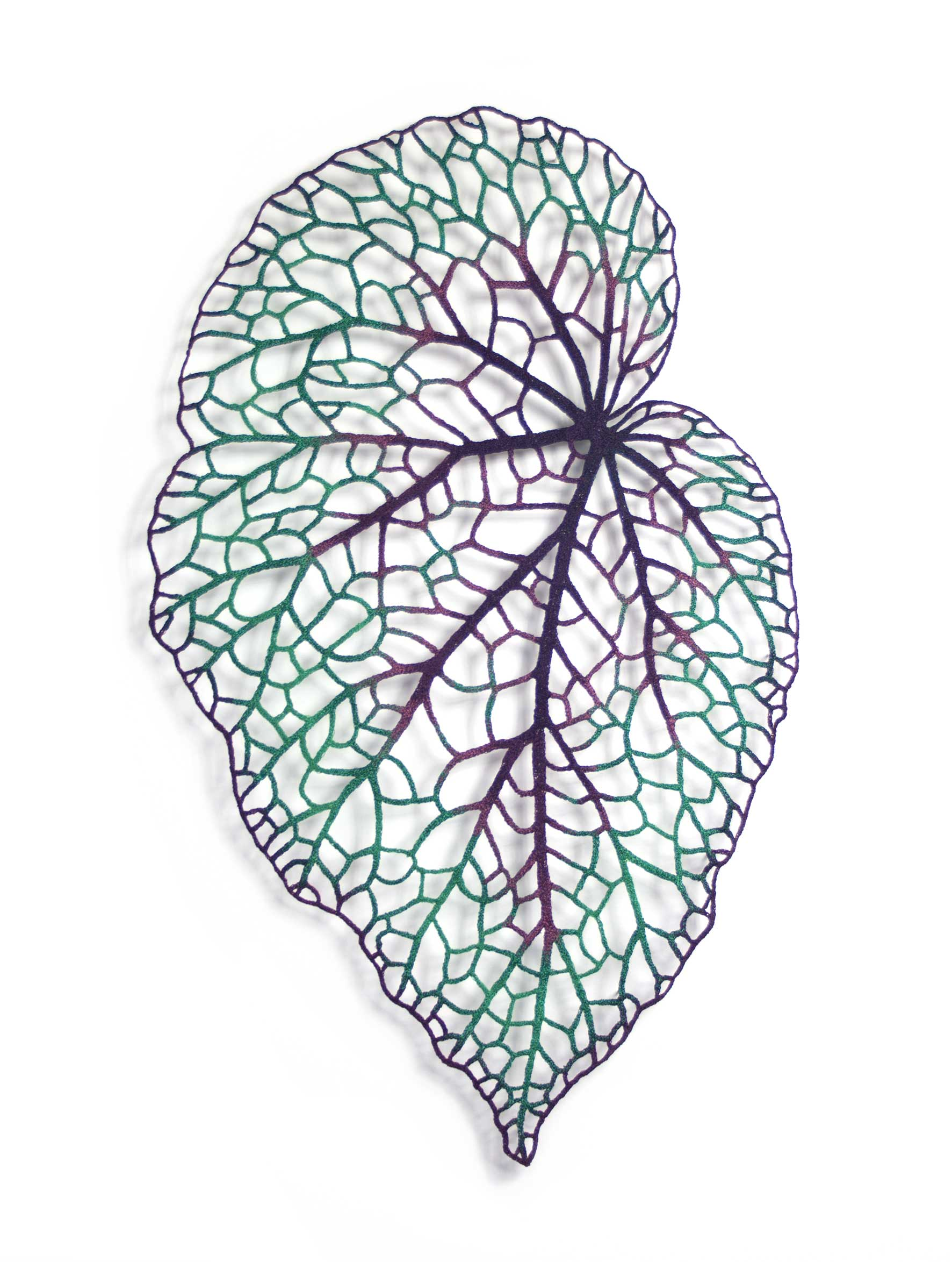 meredith woolnough feuille