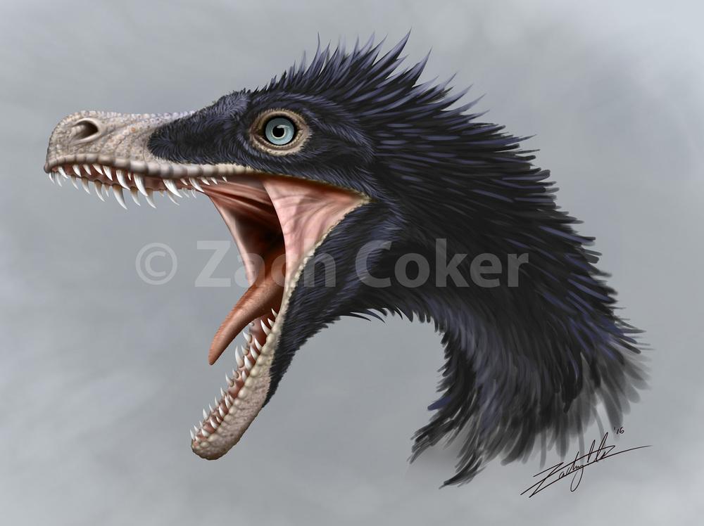 3 Velociraptor Gallery.jpg