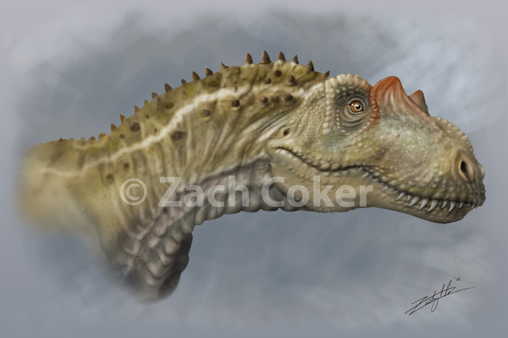 5 Allosaurus Gallery.jpg