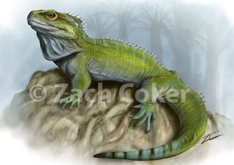 Clevosaurus 2_1 Gallery.jpg