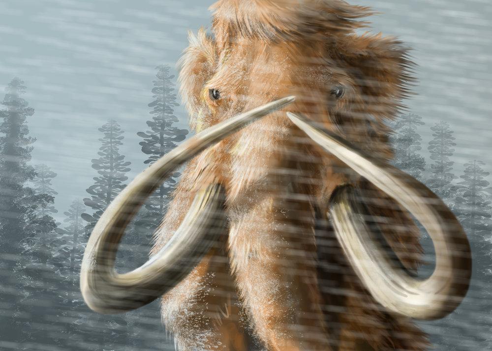 Mammoth Final.jpg