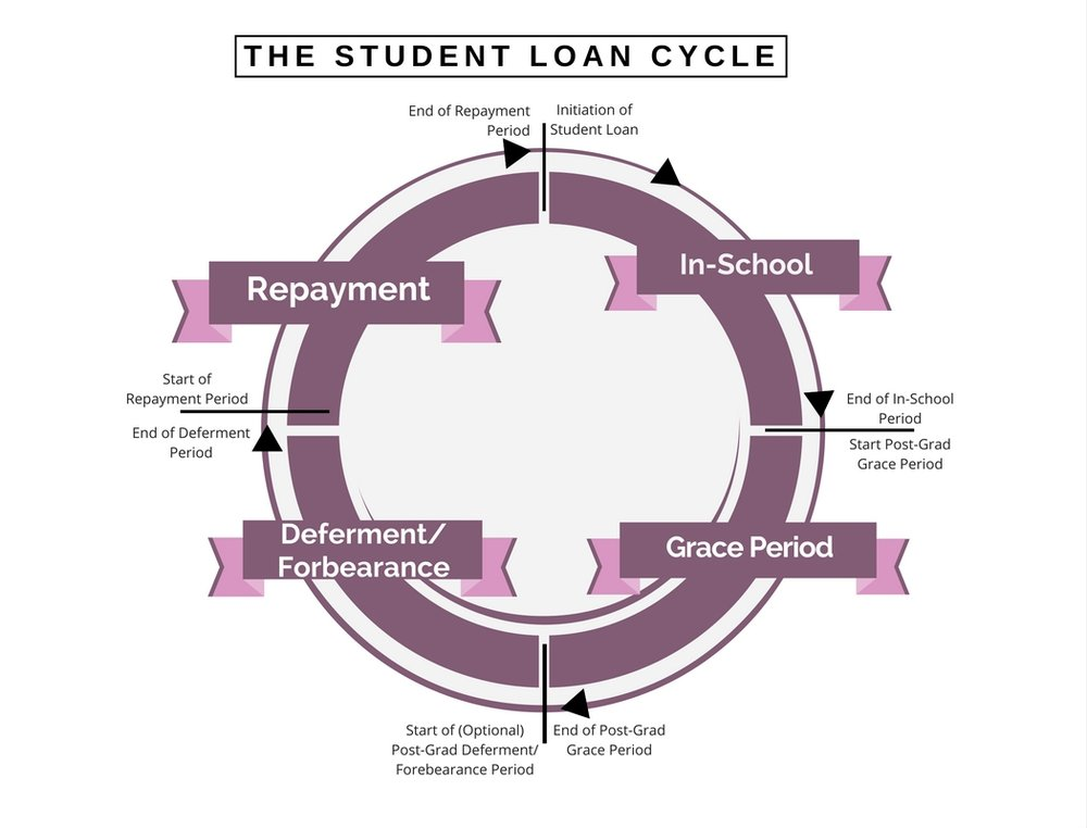The student loan cycle