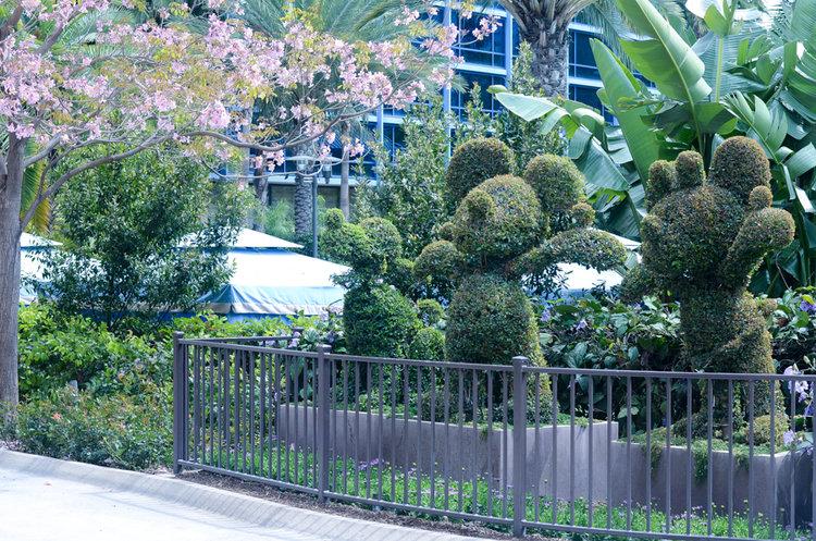 The Disneyland Hotel -
