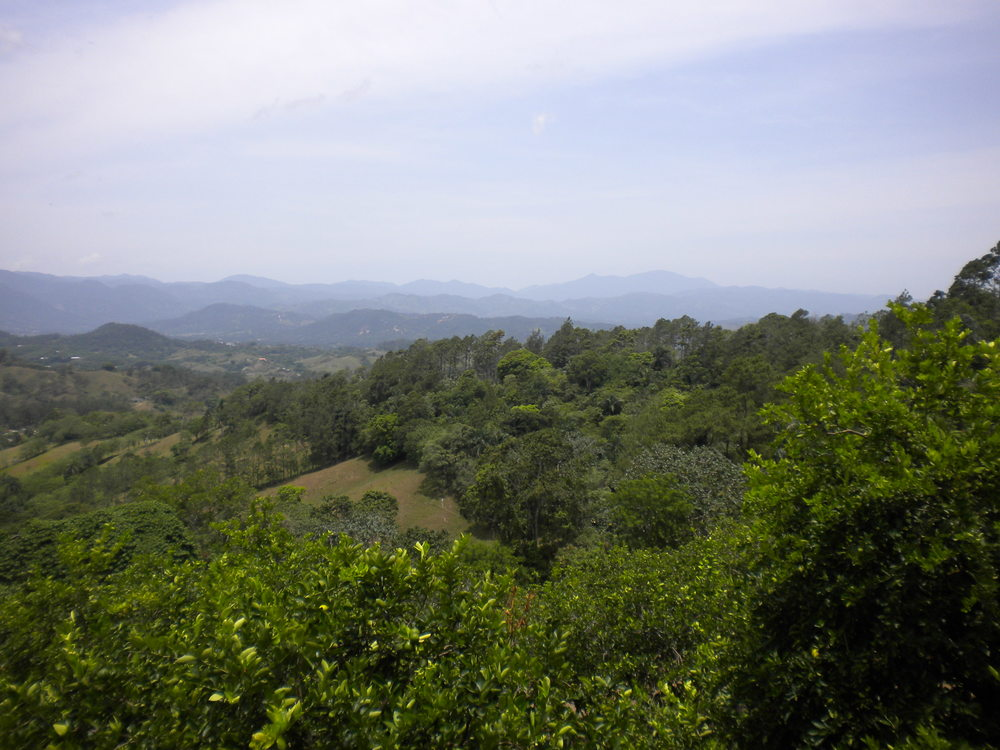 Mountain Views Alterra Jarabacoa