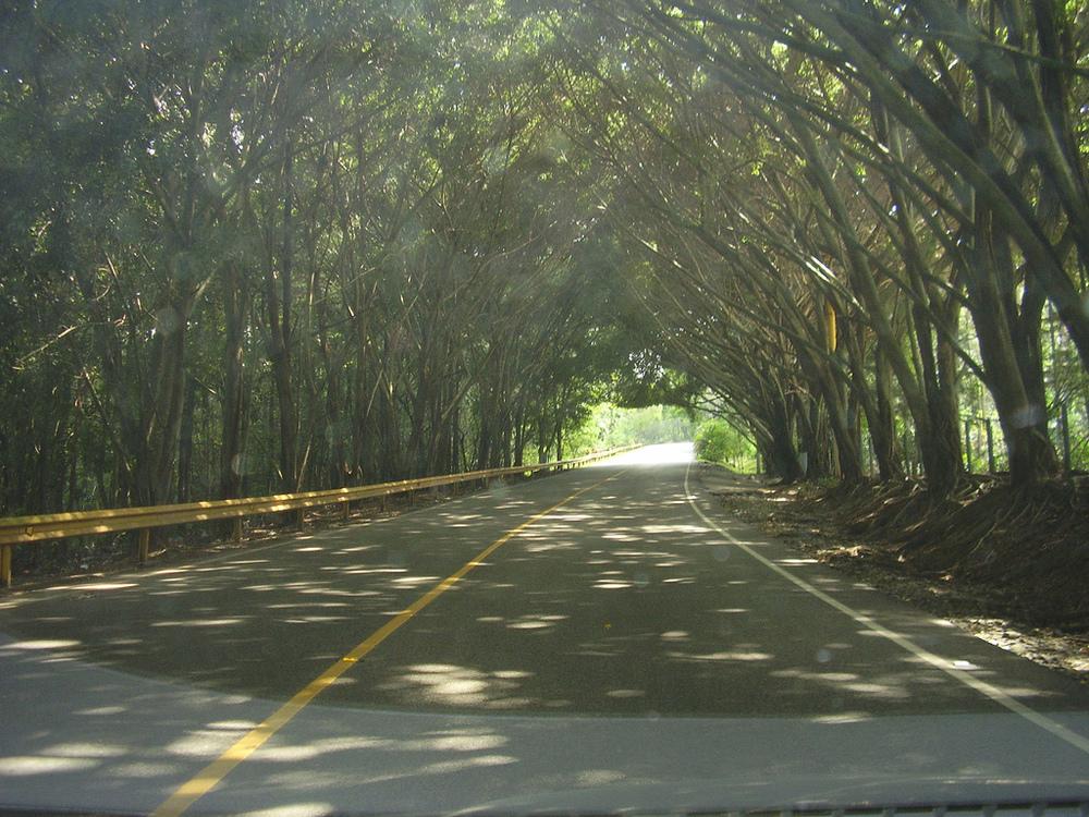 Road to Jarabacoa