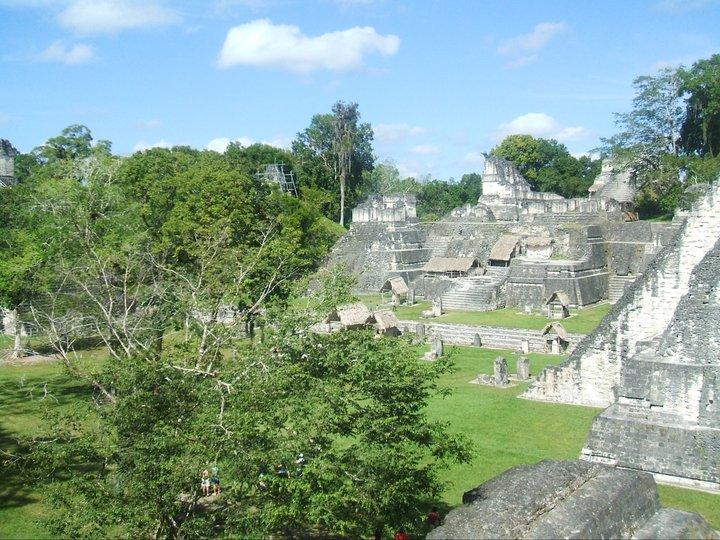 ruins of tikal.jpg
