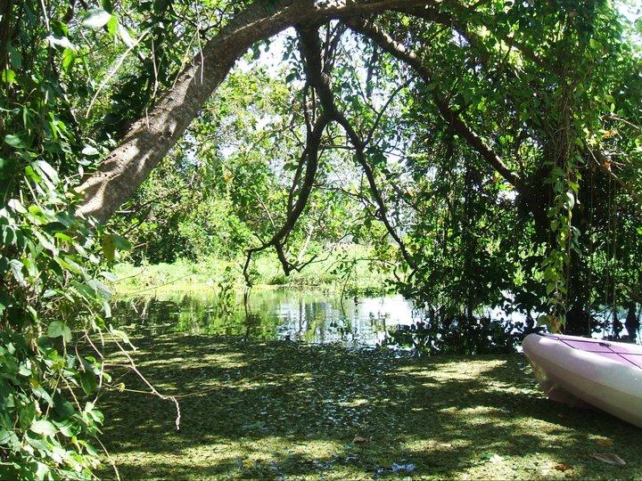 KAYAKING LAKE NICARAGUA AROUND ISLAND OMETEPE.jpg