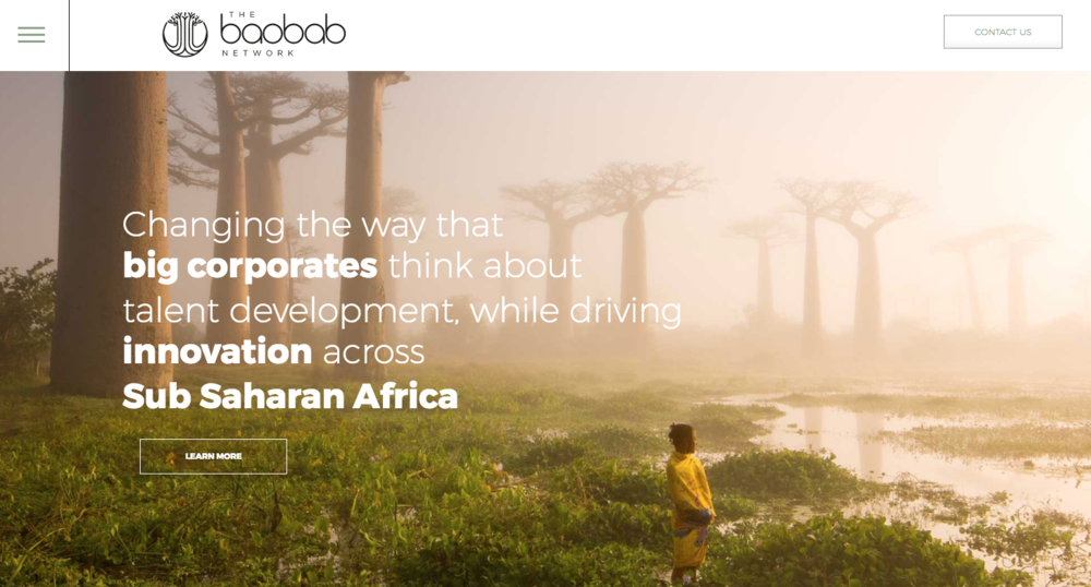 The Baobab Network - a website can be a great tool when launching a crowdfunding campaign it enables people to get more of a feel for you and your businesses objectives