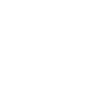 Q-LOGO_JUNE2017WHITE.png
