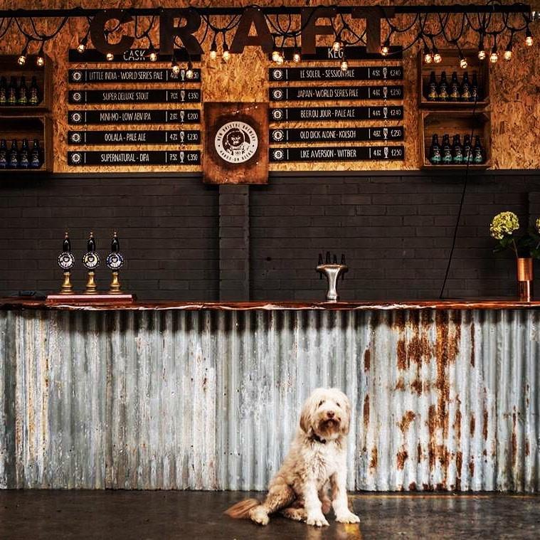 brewdog joss.jpg