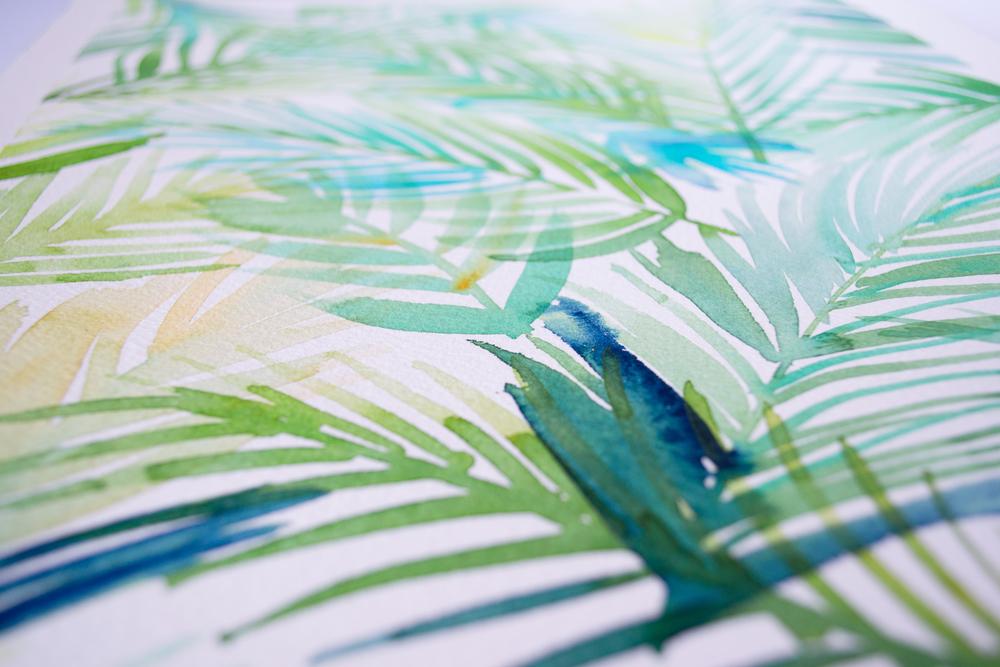 palmae2.jpg