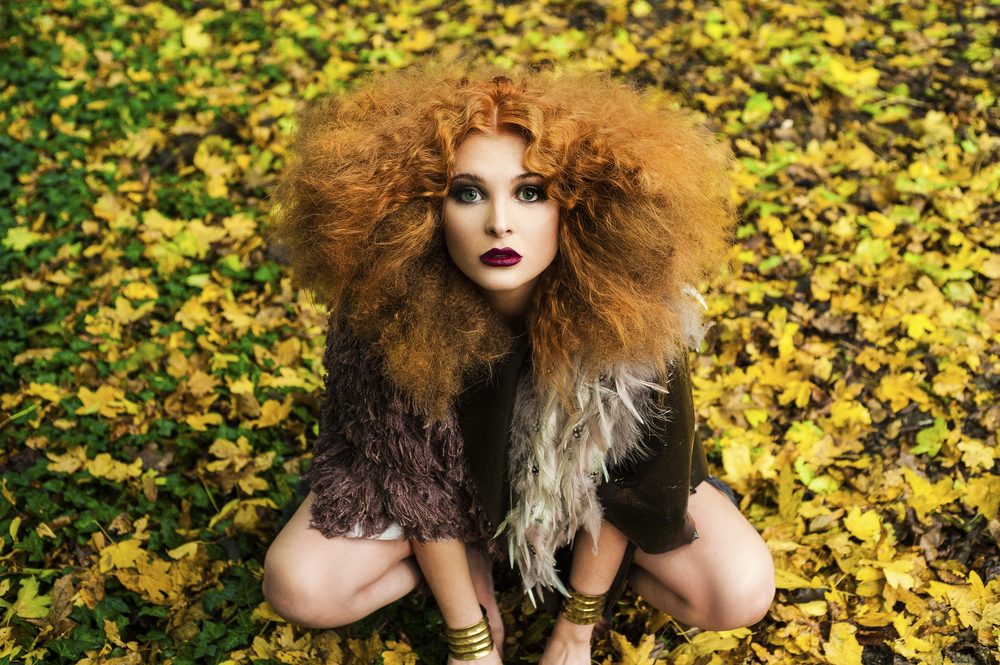 Lioness 2.jpg