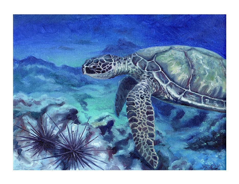 sea turtle 2E.jpg