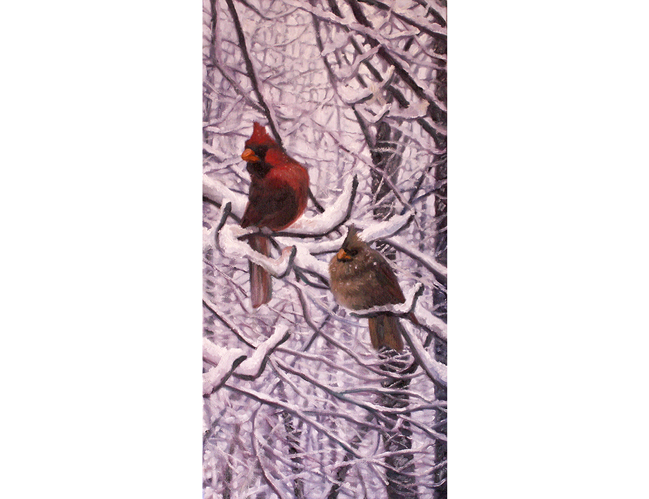 Cardinal pair E.jpg