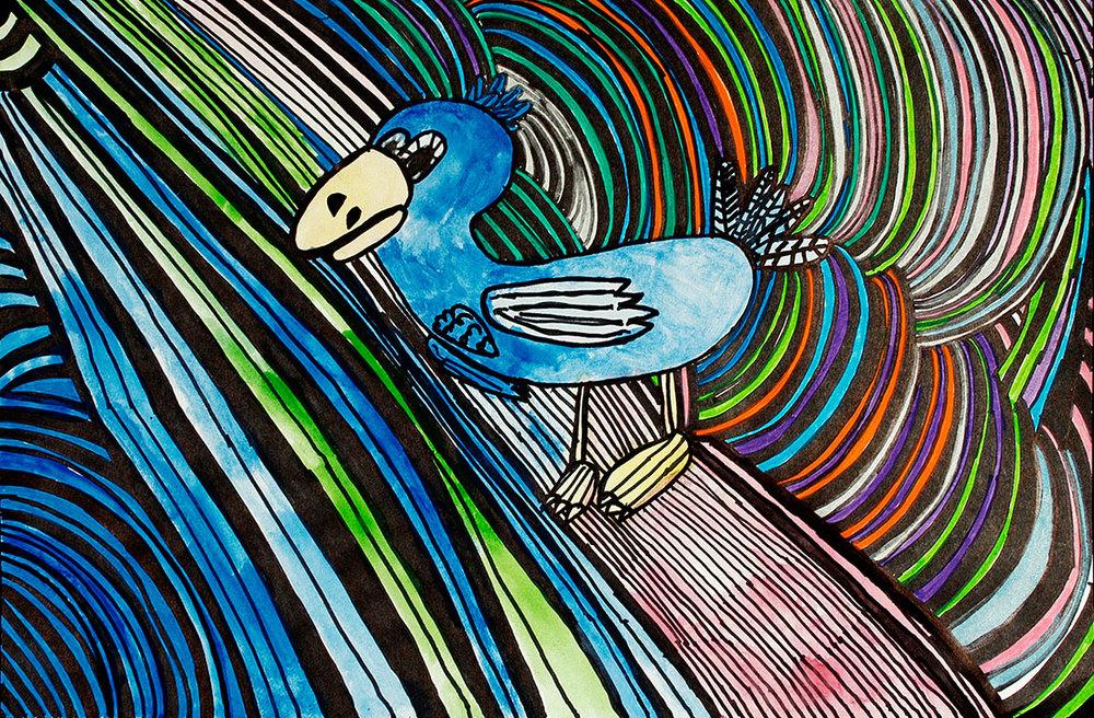 Daryl-bird-2.jpg